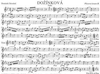 Dozinkova-Ten.