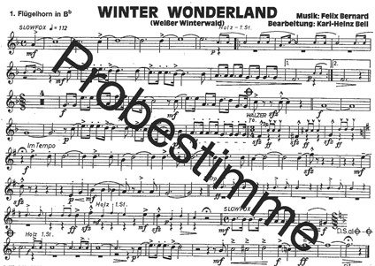 Winter_Wonderland-Flg.